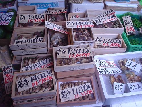 20051017_日本玩第三天_047_築地石橋妻商店岩手松茸_02