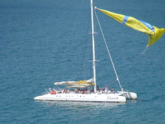 sail, sailboat, sailing, sailboat racing, vehicle, sailing, sea, mast, wind, watercraft, catamaran, boat,
