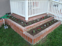 Baby Flower Beds 032309