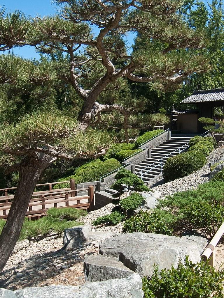 Japanese Landscape At Huntington Gardens In Pasadena