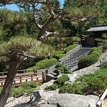 Japanese landscape at Huntington Gardens in Pasadena California