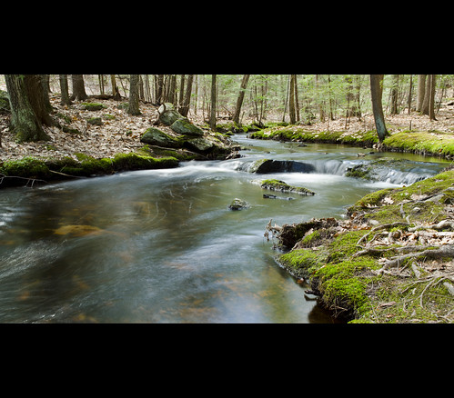 county light green nature water colors digital forest river moss spring nikon rocks raw north may newengland streams nikkor 1870mm d7000 artistoftheyearlevel3 artistoftheyearlevel4
