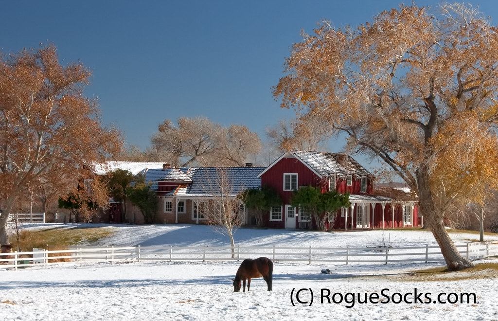 Snow Ranch Red House Horse Fall Yellow Trees Spring Mounta