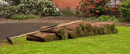 Our team offer landscaping and lawn care services.