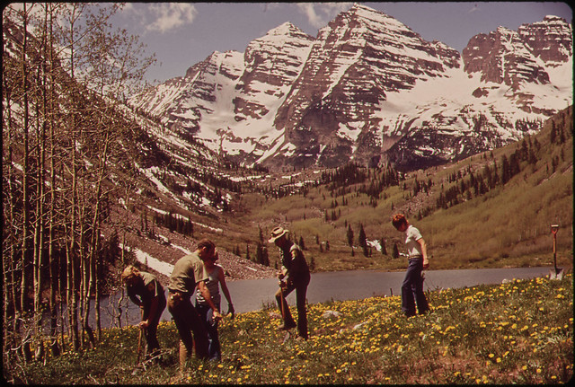 DOCUMERICA: Aspen Residents Help U.S. Forest Service Personnel Plant Seedlings at Marron Lake Campground, 12 Miles North of Aspen, 05/1972 by David Hiser.