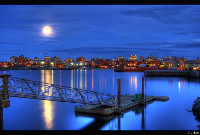 The Docks and The City: Victoria B.C's Skyline