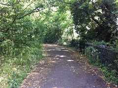 Upwards path