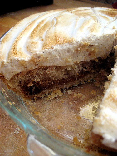 Chocolate Butterscotch Chip Cookie Cinnamon Swirl Cake Pie with ...