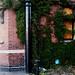 Disused Offices, Barrack Street, Norwich, U.K.