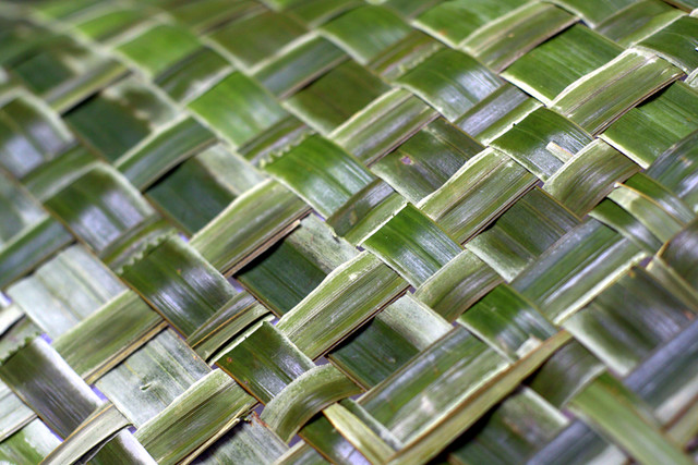 How To Weave A Basket From Banana Leaves : Banana leaf weaving detail flickr photo sharing