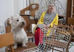 Life / work / dog balance