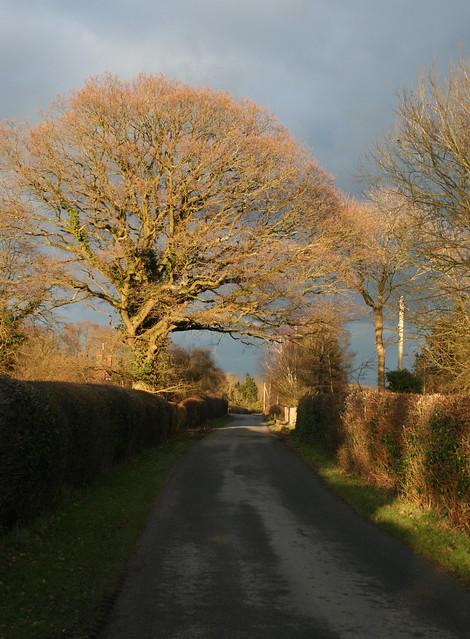 Fontridge Lane Two