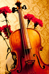 bowed string instrument, classical music, string instrument, violin, viol, viola, violone, red, fiddle, cello, string instrument,