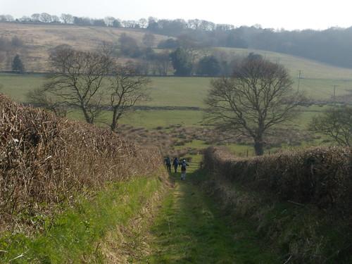 Down a bridleway