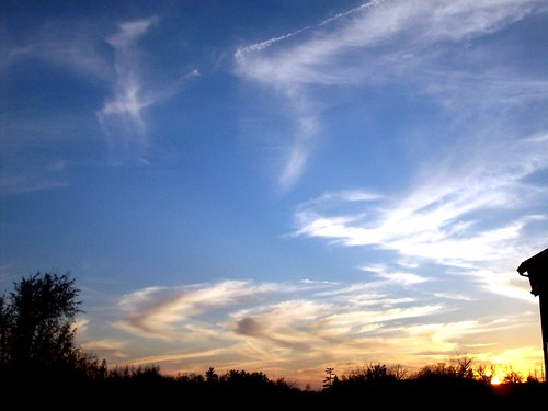 trees sunset sky clouds evening scenery springfieldmissouri theozarks rottladyhome