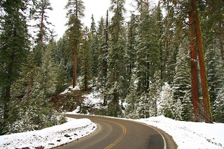 Yosemite – Snowy Entrance Wawona Road – Color | by fortherock