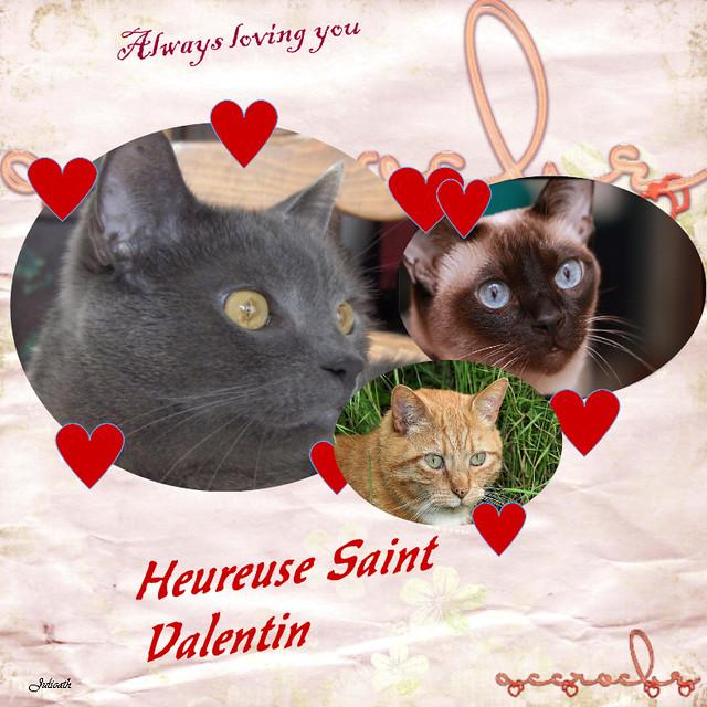 Bonne St Valentin et bon week end à tous!  Flickr - Photo Sharing!