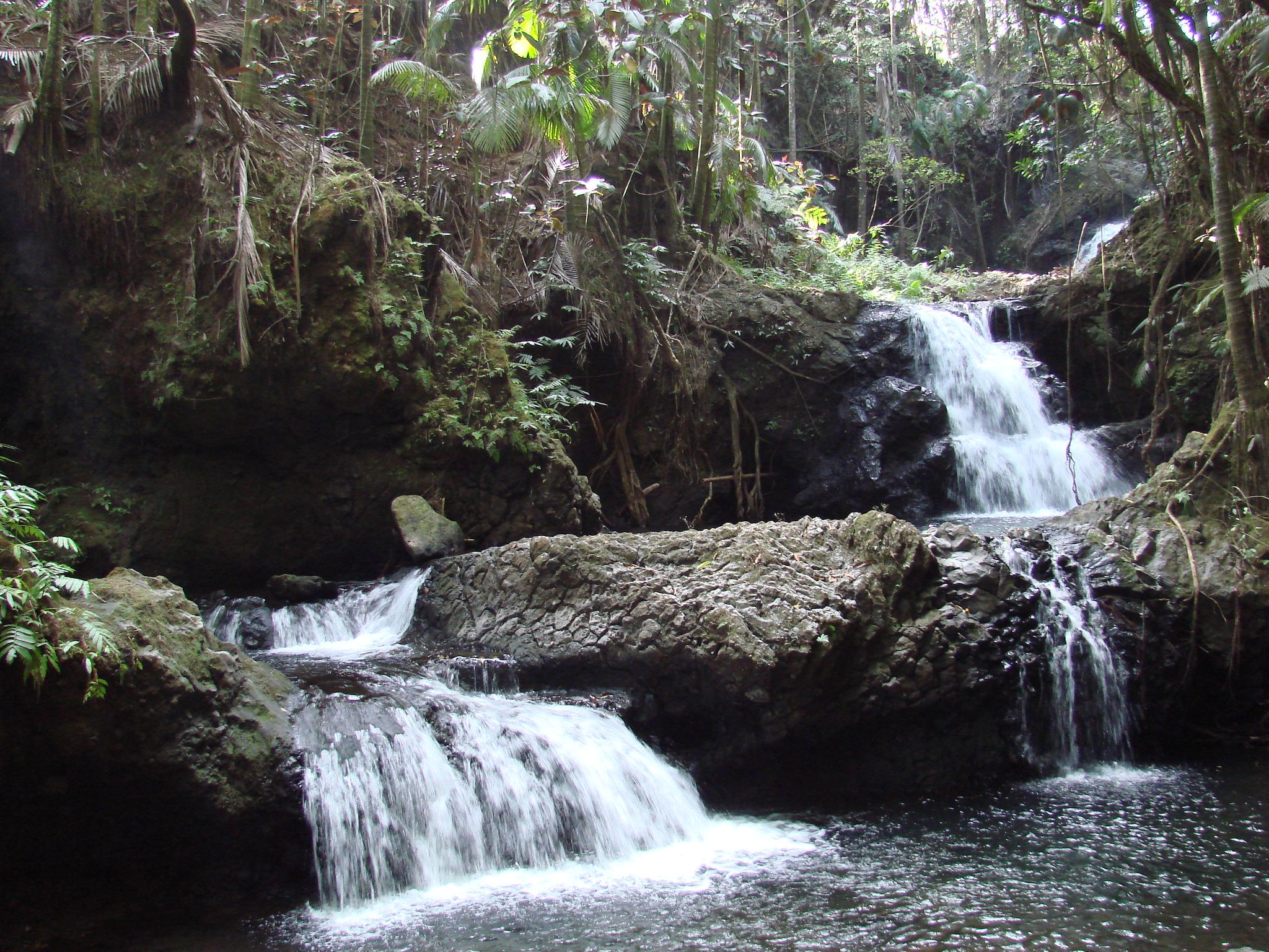 Hawaii Tropical Botanical Garden Waterfall Garden Ftempo