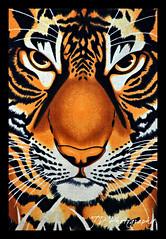 animal, big cats, tiger, mammal, illustration, modern art,