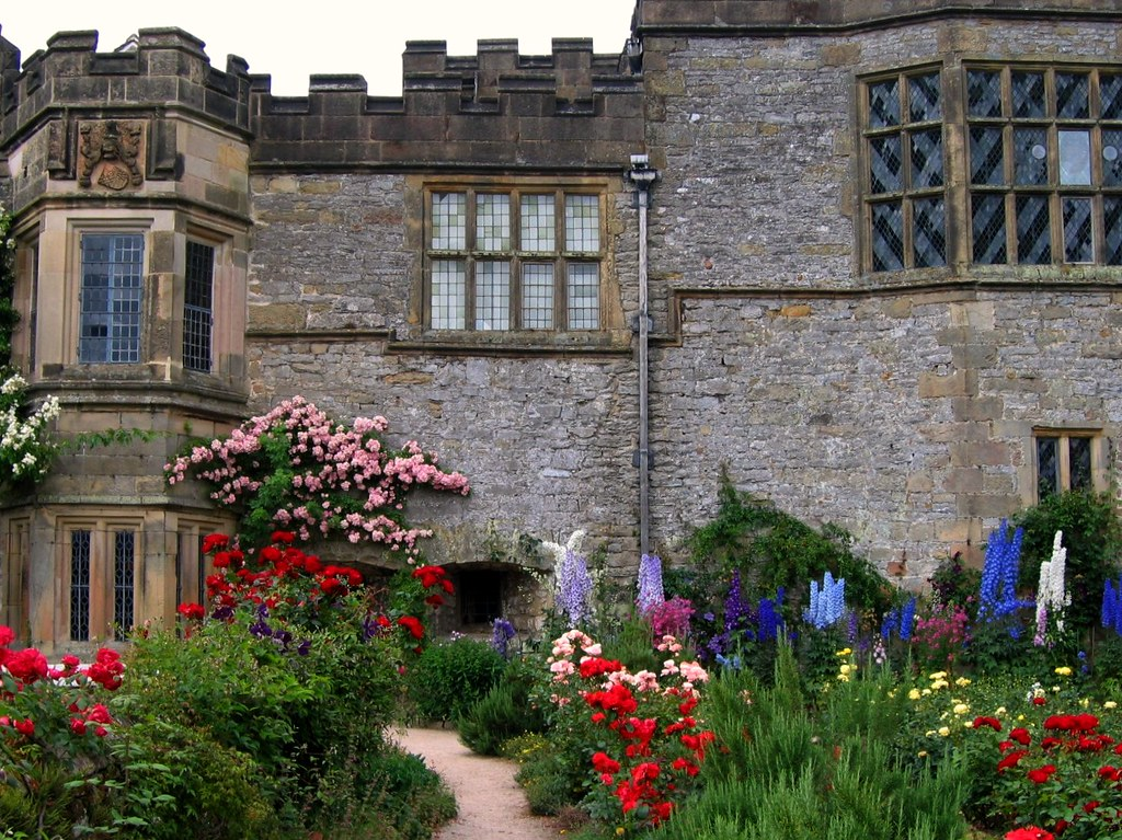 Roses and Delphiniums at Haddon Hall by UGArdener