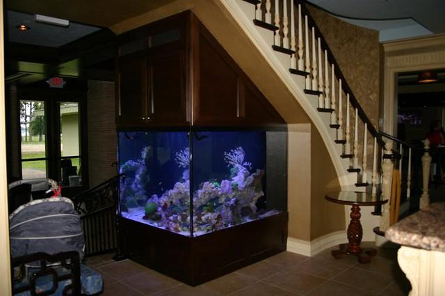 100 gallon fish tank dimensions 100 gallon tank with big for 100 gallon fish tank for sale