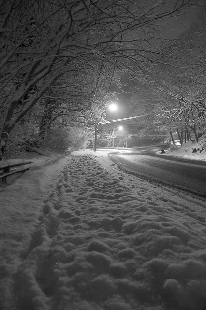 Palmer Road, Yonkers, NY