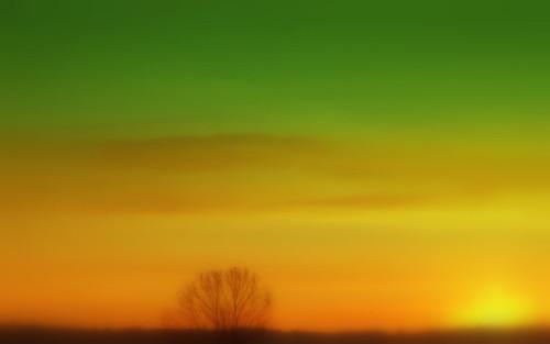 ohio cleveland hugs getwellsoon kirtland holdenarboretum treehugger007 favoritecolorcombination greenandgoldsunrise theskywastintedgreen thegoldwasreallythere bicknellfield