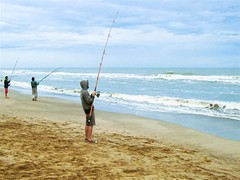 beach, fishing, sea, casting fishing, wind, wind wave, surf fishing, shore, coast,