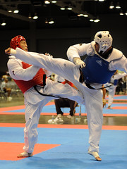 hapkido(0.0), tang soo do(0.0), brazilian jiu-jitsu(0.0), striking combat sports(1.0), individual sports(1.0), contact sport(1.0), taekwondo(1.0), sports(1.0), combat sport(1.0), martial arts(1.0), karate(1.0), sanshou(1.0),