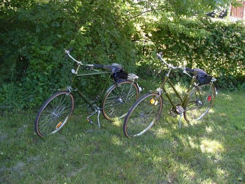 His and Hers Raleigh Sports
