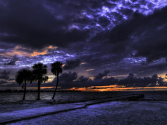 North Shore Sunrise 3 Palms HDR 640