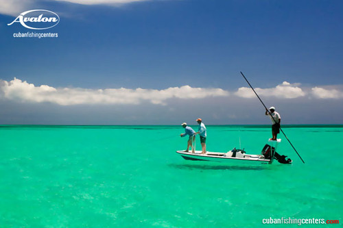 Fly fishing in the Caribbean Paradise | Flickr - Photo Sharing!