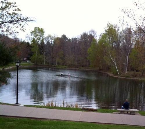 Pond filter maintenance pond filter 5th order for Pond filter maintenance