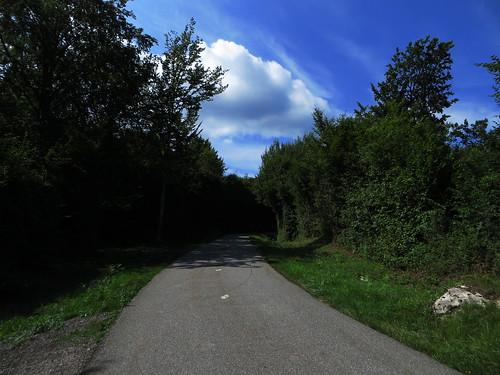 20130814 06 134 Jakobus Wolken Weg Wald