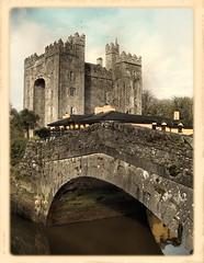 Bunratty Bridge and Castle