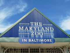 Maryland Zoo in Baltimore