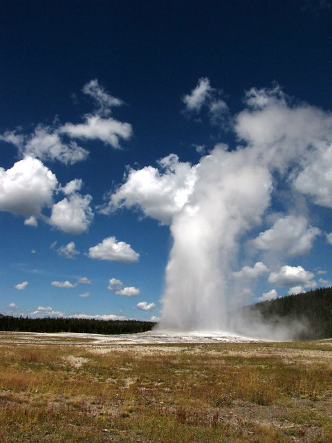 Old Faithful being faithful
