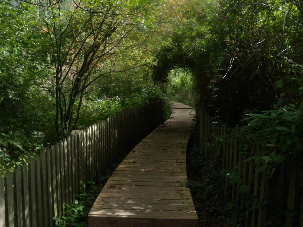 Sinuous boardwalk Edenbridge to Westerham