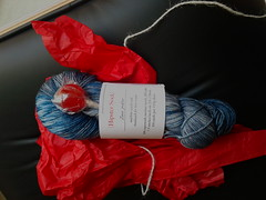 Little Red Bycicle yarn club #1 -- Zeu pater