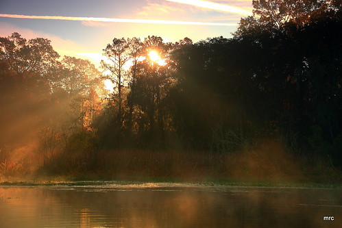 morning trees usa sunrise canon reflections landscape kayak southcarolina sunrays goosecreek crepuscularrays tamron1750 40d canon40d betterthangood