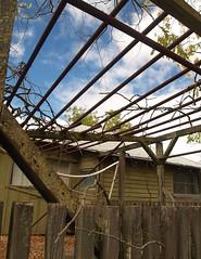 Abandoned House near Soledad, CA