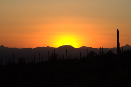 Sunset @ Arizona Sonora Desert Museum