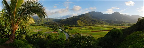 sunset panorama hawaii lookout kauai fields taro eschborn hanaleivalleylookout hawaiiansummer eschbornphotography