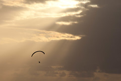 Para Gliders over Puerto de la Cruz