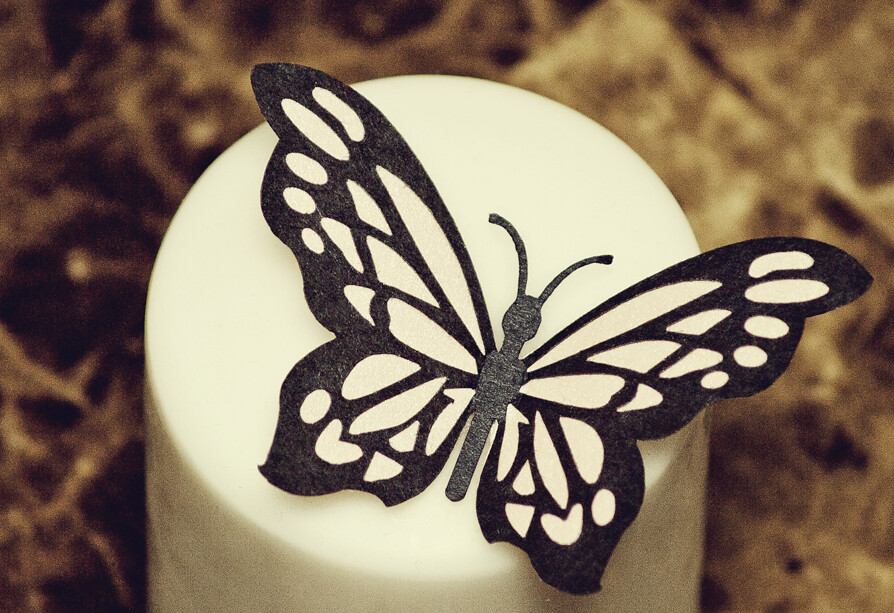 Superb Butterfly Decoration