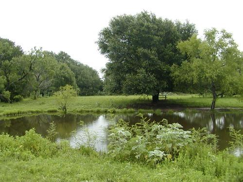 family water pond texas farm country nixon leesville nixontexas leesvilletexas