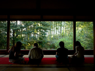 conversations (Housenin temple, Kyoto)