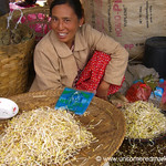 Bean Sprouts - Inle Lake, Burma