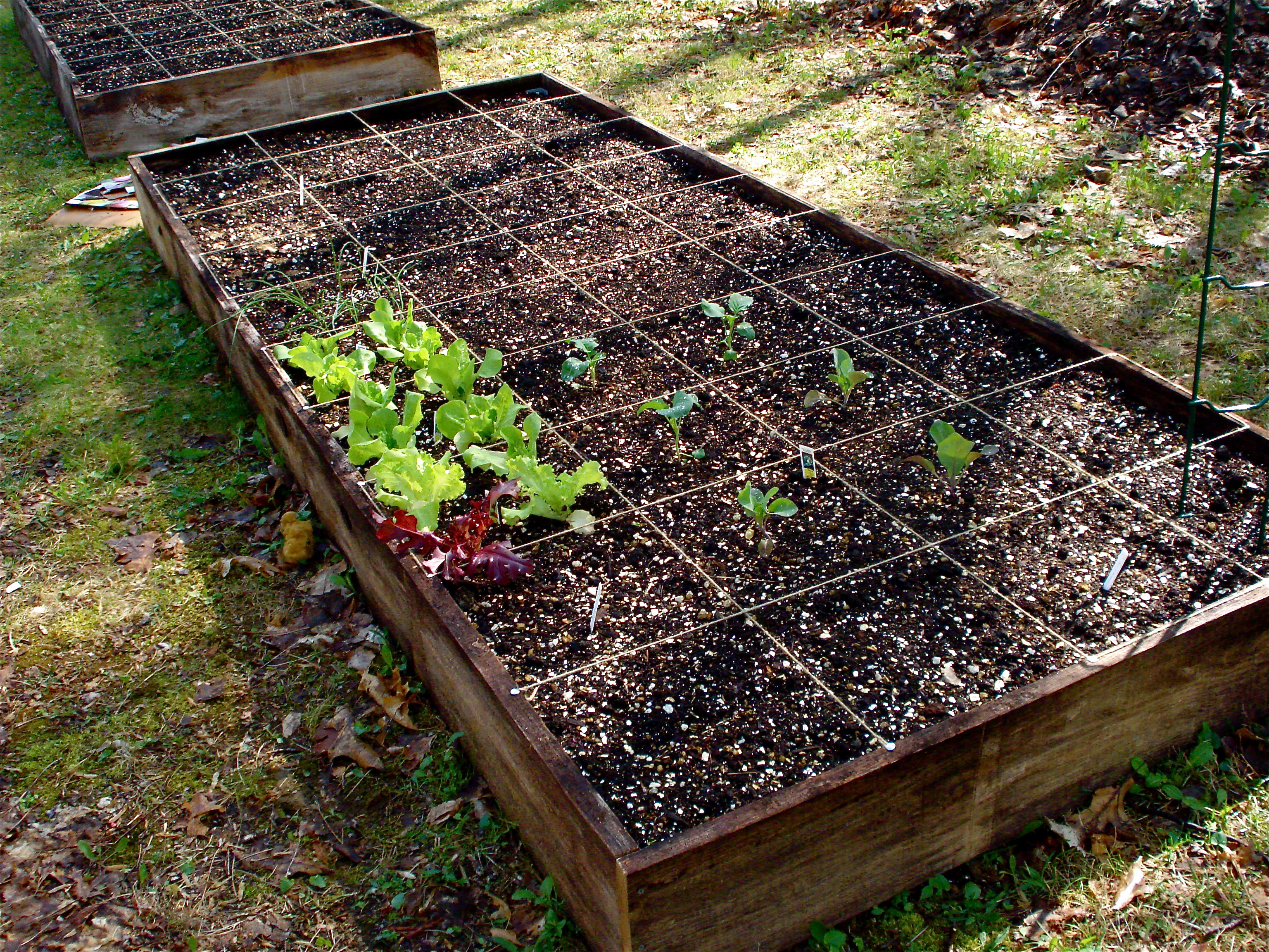 Square foot gardening in 2008 i added 6 raised beds to for Square foot garden designs