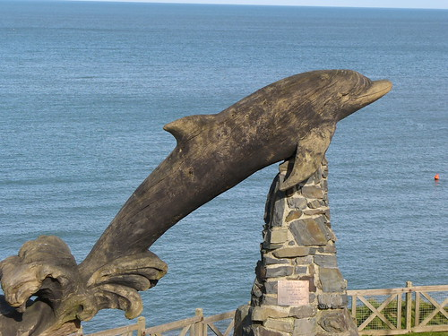 Leaping Dolphin above Aberporth Beach
